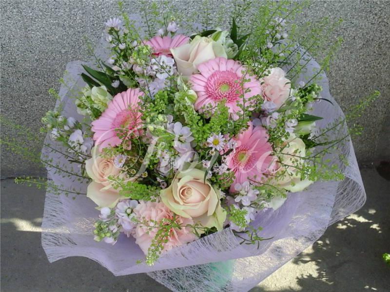 kvetiny-praha-dodani-ruze-fialy-karafiaty-astry-gerbery