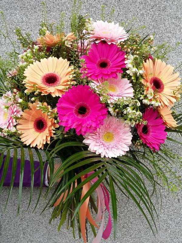 kvetiny-praha-rozvoz-kytic-gerbery-kokoska-chamelaucium