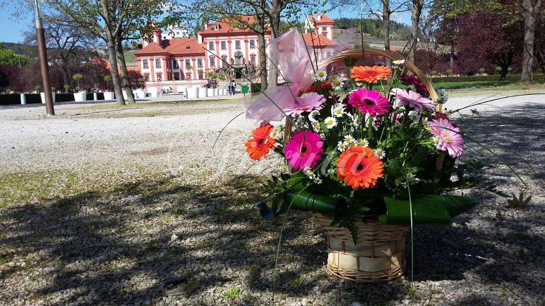 kvetinarstvi-praha-rozvoz-kos-gerbery-santinky