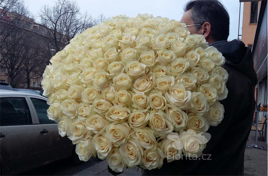 kytice-101-bila-ruze-bouquet-101-white-roses-101-belaya-roza