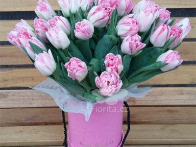 Tulipány v krabici, Tulips in a box, Тюльпаны в шляпной коробке