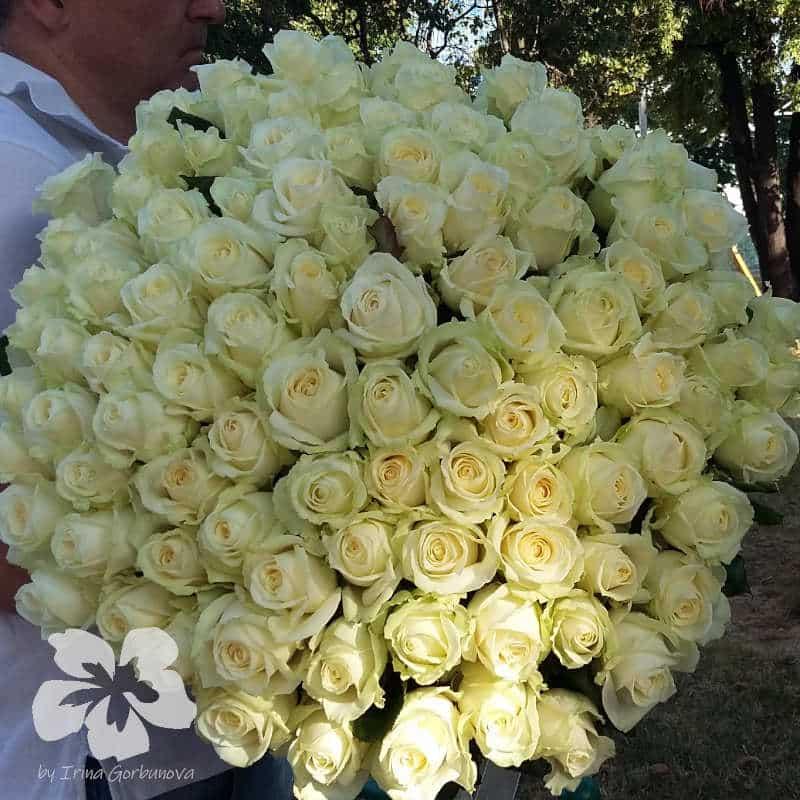 Букет из 101-й длинной белой розы