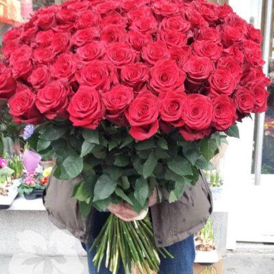 100 длинных красных роз