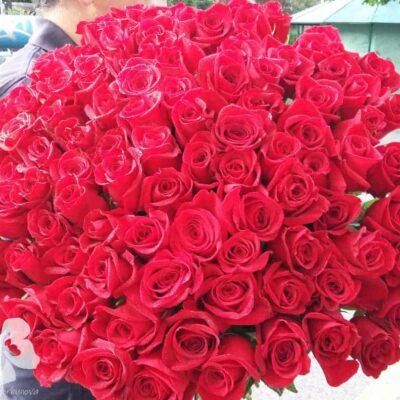 Букет из 101-й длинной красной розы
