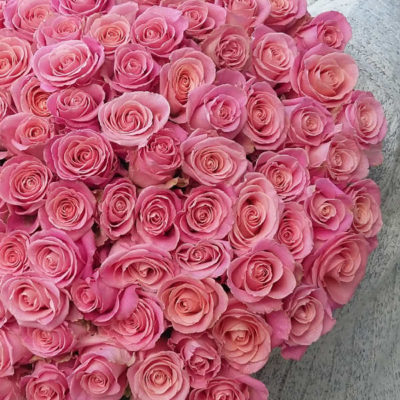 25 long light pink roses