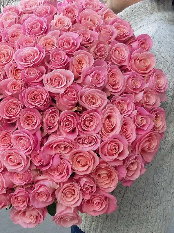 25 длинных светло-розовых роз