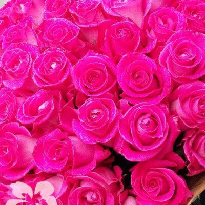 15 длинных темно-розовых роз
