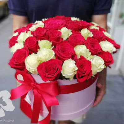 Box of 50 red and white roses
