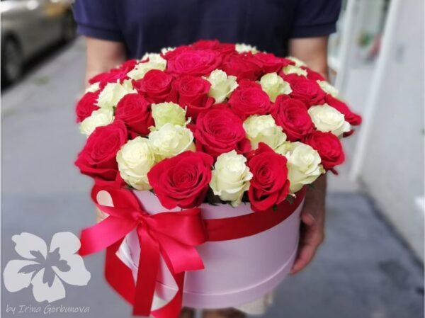 Krabice 50 červených a bílých růží