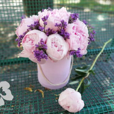 Box with 9 peonies and limonium