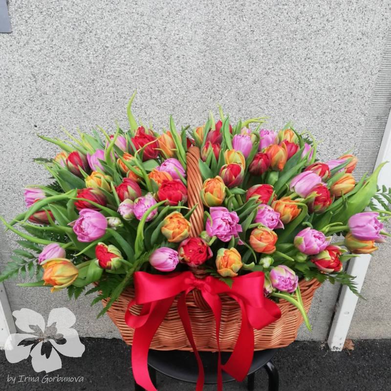 Basket of 75 tulips