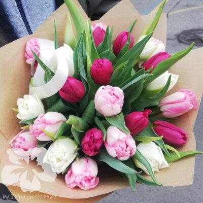25 pivoňkových tulipánů