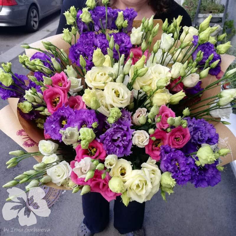 A bouquet of 19 eustomas